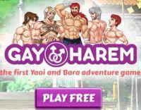 Gay Harem free game